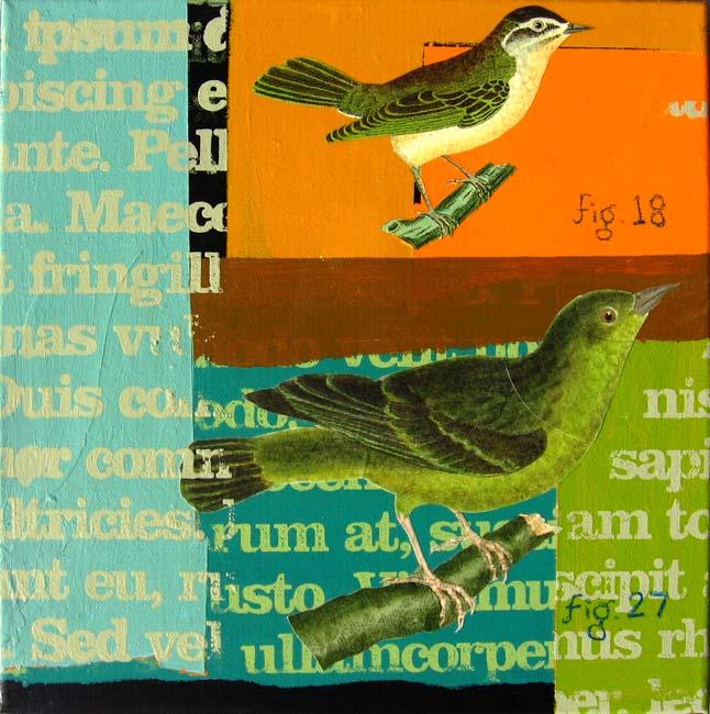 orinthology_2008_12x12tx